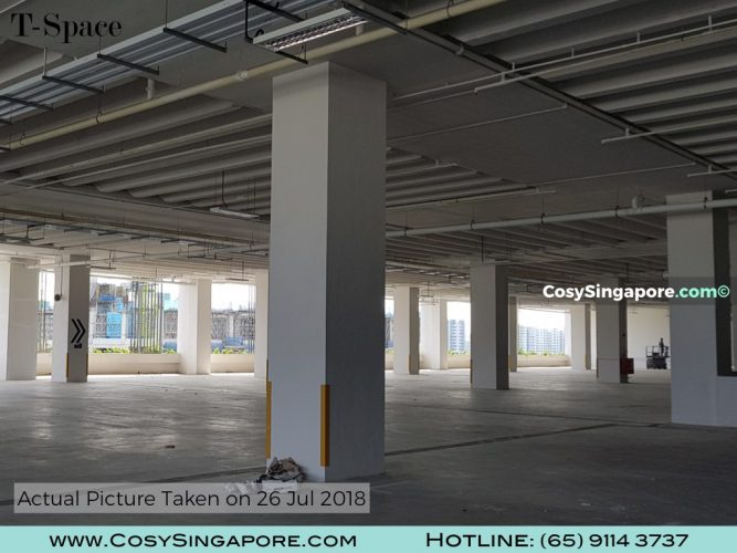 T-Space For CosySingapore.com.008