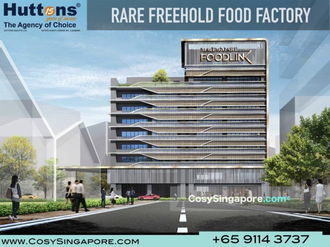 Freehold Food Factory Singapore Mactaggart
