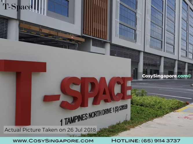 T-Space For CosySingapore.com.002