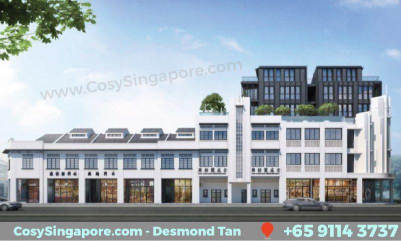freehold shophouse singapore