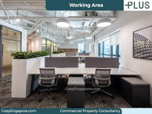 office-working-area-plus-20-cecil